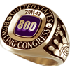 800 Series Ring Grand Large Gold Siladium (Adult and Youth Purchaseable Upgrade)